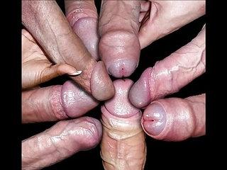 cock porn videos